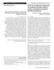 Efecto de la fertilización nitrogenada en la dinámica del ... - Corpoica