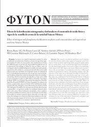 Efecto de la fertilización nitrogenada y fosforada en el ... - Phyton