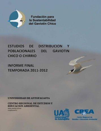 informe final - Fundación Gaviotín Chico