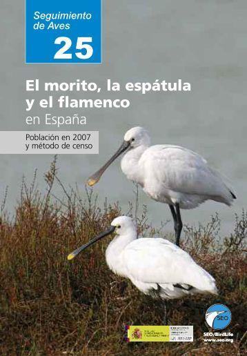El morito, la espátula y el flamenco en España - SEO/BirdLife
