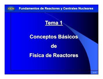 Tema 1 Conceptos Básicos de Física de Reactores