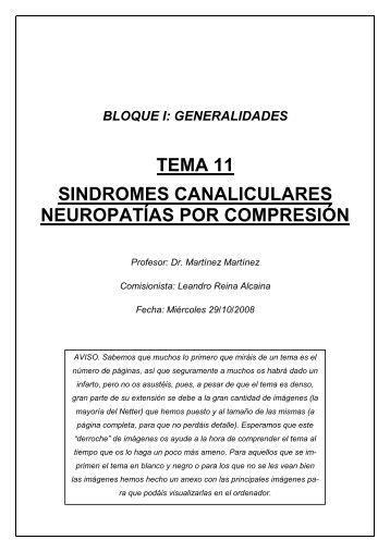 tema 11 sindromes canaliculares neuropatías por ... - Doctortazo