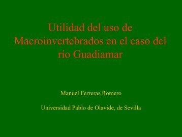 Utilidad del uso de Macroinvertebrados en el caso del río Guadiamar