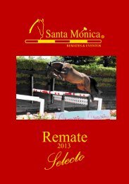 Untitled - Santa Mónica Remates & Eventos