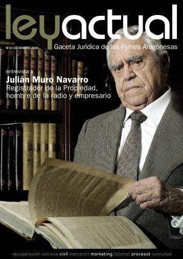 Julián Muro Navarro - Ley Actual