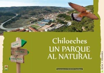 Ayuntamiento de CHILOECHES (Guadalajara) RUTAS Y ...