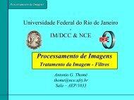 Processamento de Imagens - UFRJ