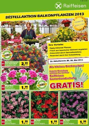 Balkonblumen bestellen bis 08. April 2013.pdf