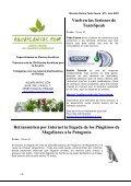 Aproximación a los Bonsáis - Todo Fauna - Page 3
