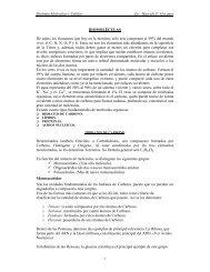 Biología Molecular y Celular Lic. Marcelo F. Goyanes ... - Korion