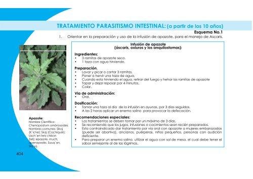 tratamiento para las parasitosis intestinal