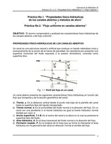 """Práctica No.1. """"Propiedades físico-hidráulicas de los canales ..."""