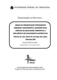 Dissertação DE MESTRADO - Universidade Federal de Uberlândia
