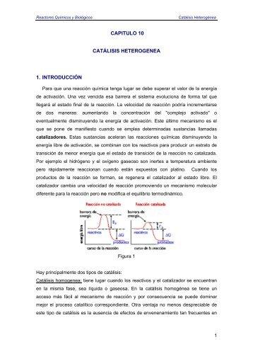 CAPITULO 10 CATÁLISIS HETEROGENEA 1. INTRODUCCIÓN
