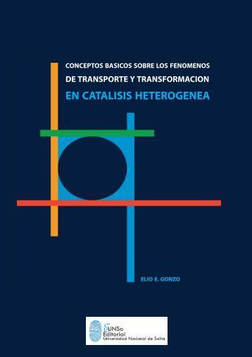 EN CATALISIS HETEROGENEA - Facultad de Ingeniería - UNSa ...