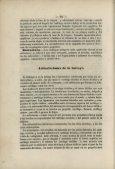 Pliegues del peritonéo. - Page 6