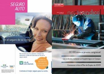 Ver publicación en formato pdf - Comisiones Obreras de Cantabria ...