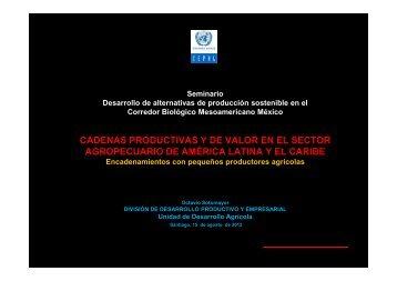 Octavio Sotomayor, Unidad Desarrollo Agrícola – DPPE - Cepal
