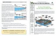 Las aguas subterráneas y los acuíferos de Puerto Rico