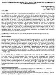 PRODUCCIÓN ORGANICA DE ARROZ Oryza sativa L. (var Amistad ...