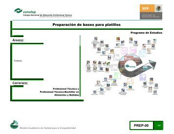 03 Preparacion bases.. - Conalep Veracruz