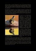 Fotografia en comederos.pdf - Jorge Rubio - Page 6