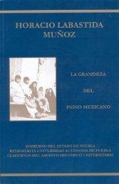 libro 13 carhist - Secretaría General - Benemérita Universidad ...