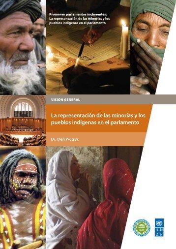 La representación de las minorías y los pueblos indígenas en el ...
