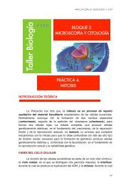 4_ESO_AMPL-Practicas_files/CITOLOGÍA 4-Mitosis.pdf