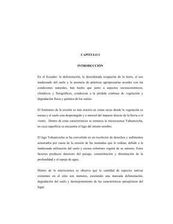03 REC 103 TESIS.pdf - Repositorio UTN