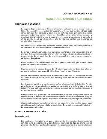 manejo de ovinos y caprinos - Consejo Estatal Caprino de Guerrero