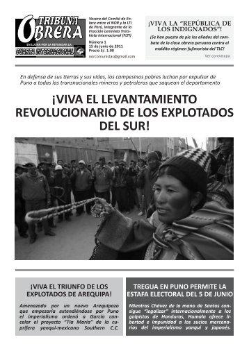 ¡viva el levantamiento revolucionario de los explotados del sur!