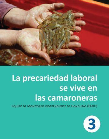 La precariedad laboral se vive en las camaroneras 3 - Emih Honduras