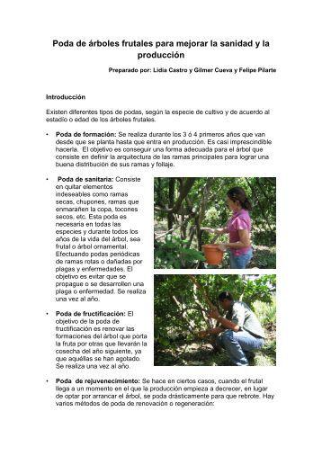 PODA DE FRUTALES - A4N