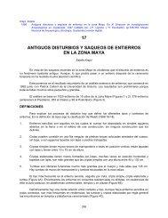 17 ANTIGUOS DISTURBIOS Y SAQUEOS DE ... - Asociacion Tikal