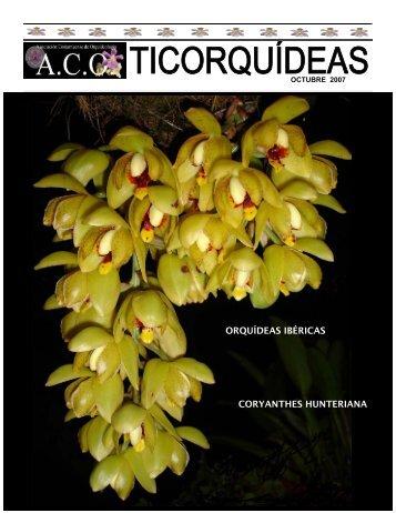 Boletín Mensual, Octubre 2007 - Asociación Costarricense de ...