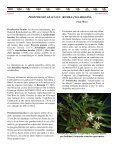 Boletín Mensual, Julio 2007 - Asociación Costarricense de ... - Page 3