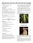 Boletín Mensual, Julio 2007 - Asociación Costarricense de ... - Page 6