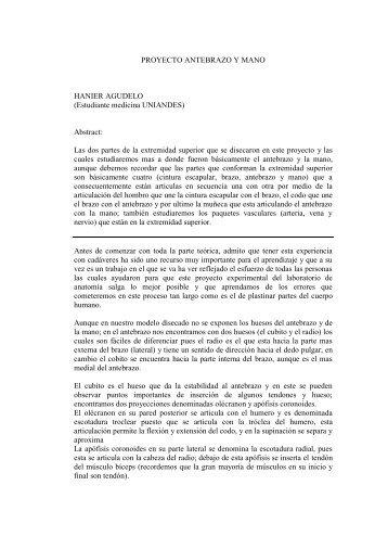 PROYECTO ANTEBRAZO Y MANO - Folia Anatómica Interactiva