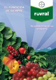 Rovral 4 Flo - Bayer CropScience Chile