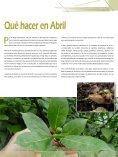 Jardín de las Tres Culturas - Cibernaturaleza - Page 5
