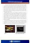 Investigarea sistemului cardiovascular uman: EKG, evaluarea ... - Page 4