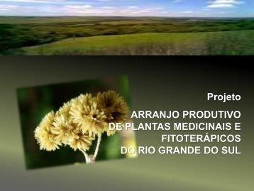 APL Rio Grande do Sul - Ministério da Saúde