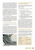 El canario Lizard - Page 4