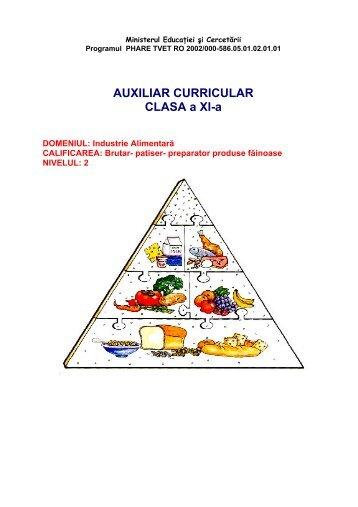 AUXILIAR CURRICULAR CLASA a XI-a - cndipt