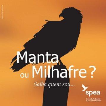 Brochura - spea