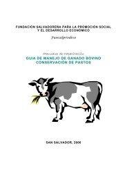 guia de manejo de ganado bovino conservación ... - Funsalprodese
