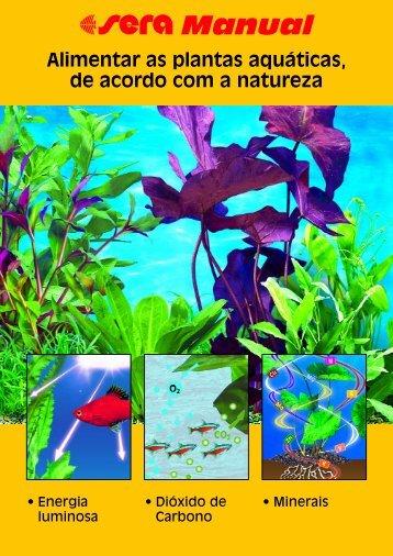 Alimentar as plantas aquáticas, de acordo com a natureza