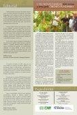 Fortalecimento de Comunidades aumenta a Produção rural - Page 2