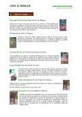Propuestas de actividades para el día del libro - CEP Azahar - Page 6
